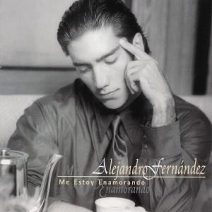 Alejandro Fernandez - Me estoy enamorando